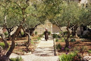 12768153-keeper-of-the-Garden-of-Gethsemane-Jerusalem-place-of-prayer-of-Jesus-on-the-night-of-his-arrest-Stock-Photo